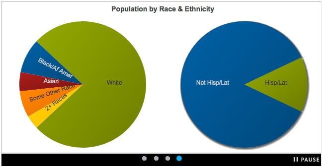 race_and_ethnicity_based_off_of_zip
